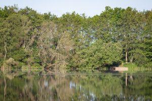 Foto impressie CarpFarm Lake 2019 | 9
