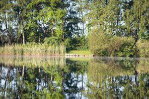 Foto impressie CarpFarm Lake 2019 | 10