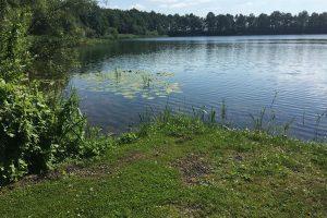 Foto 2 | Strubben stek CarpFarm Lake