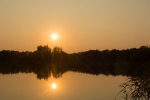Foto CarpFarm Lake impressie | 014