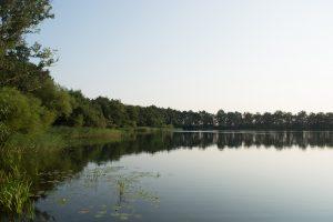 Foto CarpFarm Lake impressie | 017